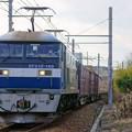 Photos: 5070レ【EF210-169牽引】