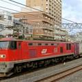 Photos: 84レ【EF510-21牽引】