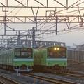 Photos: 201系 並び(おおさか東線)