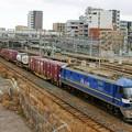 Photos: 5085レ【EF210-324牽引】
