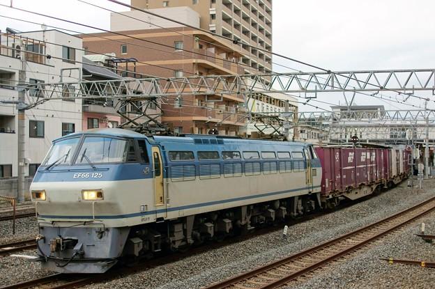 84レ【EF66 125代走】