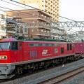 Photos: 84レ【EF510-22牽引】