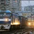 Photos: 2065レ【EF210-141牽引】