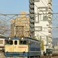 Photos: 配1792レ【EF65 2086牽引】