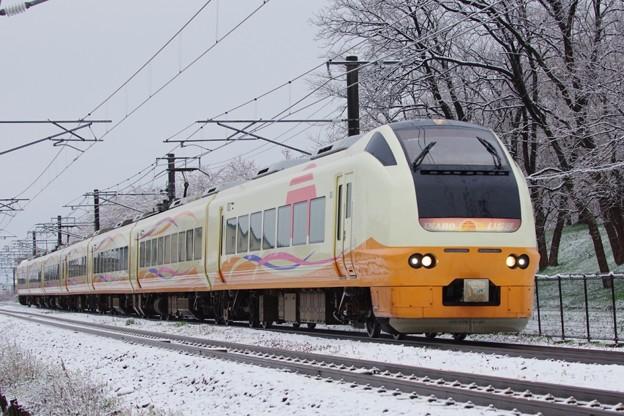 E653系1000番台U102編成 笹川流れマラソン号
