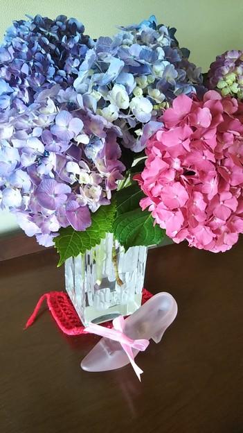 Photos: 雨の日は紫陽花を眺めて癒える