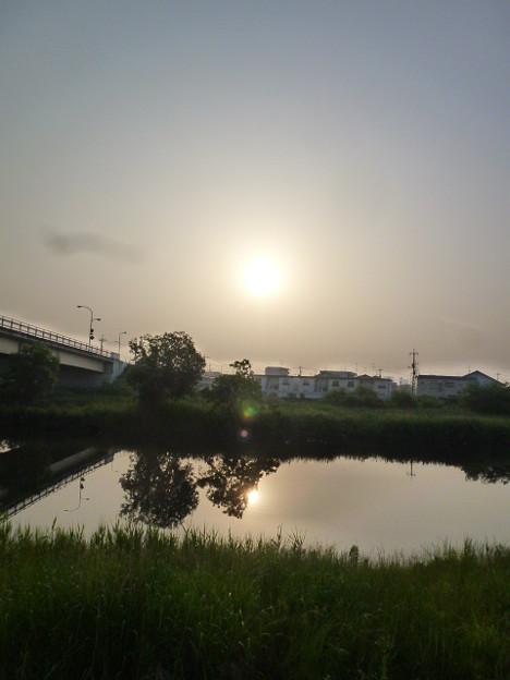 ツイン朝陽