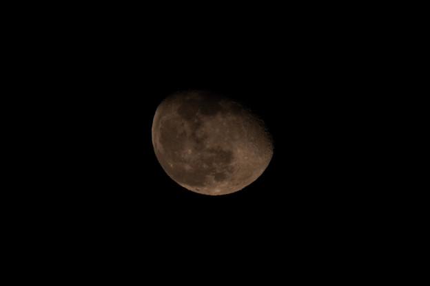 写真: 月齢 17.6