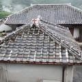 救助院の屋根