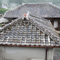 写真: 救助院の屋根