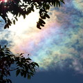 写真: 彩雲
