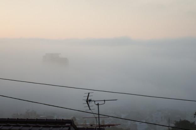 靄の中 2