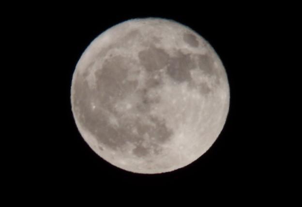 Photos: 満月