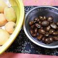Photos: 枇杷と種
