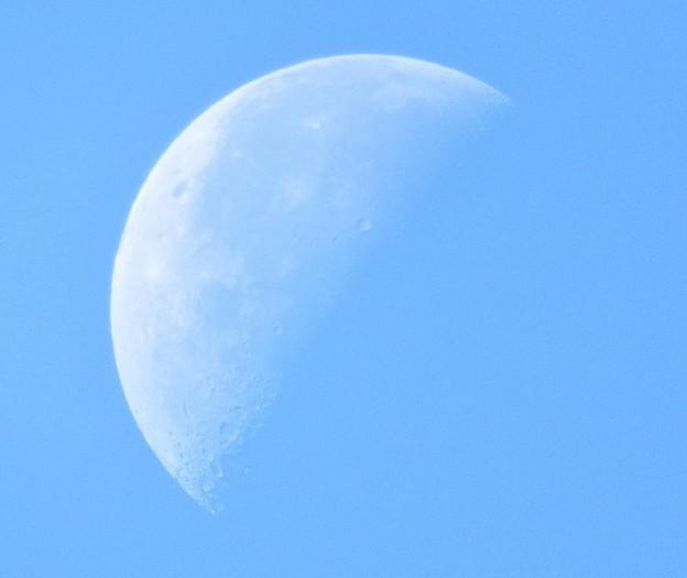 Photos: 月齢 23.3
