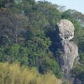 鯖腐らかし岩