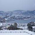 Photos: 雪が積もりました~