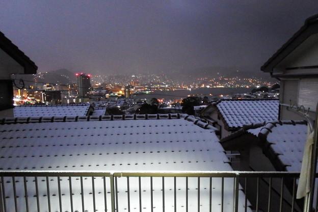 雪が積もってました~