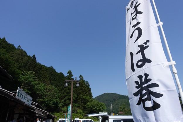 写真: DSC05235
