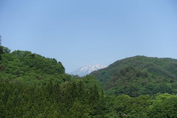 写真: DSC05245