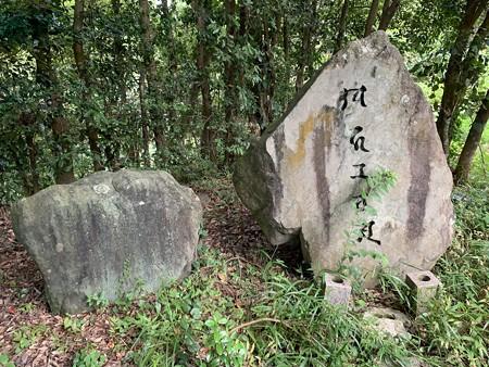202000814 kotsukotsu tunnel 011
