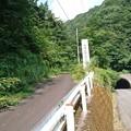 Photos: 202000814 kotsukotsu tunnel 014