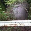 Photos: 202000814 kotsukotsu tunnel 023