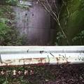 Photos: 202000814 kotsukotsu tunnel 024