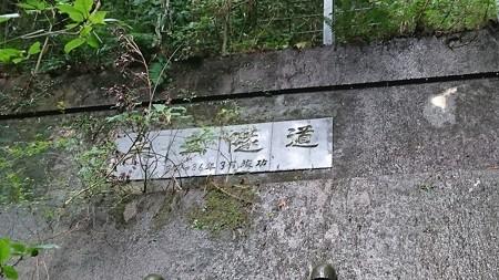 202000814 kotsukotsu tunnel 026