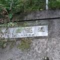 Photos: 202000814 kotsukotsu tunnel 026