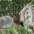 Photos: 202000814 kotsukotsu tunnel 031