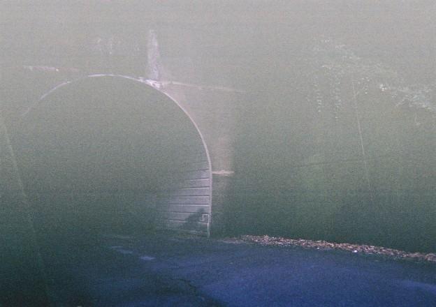 20200726 kotsukotsu tunnel picture015