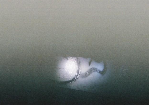 20200726 kotsukotsu tunnel picture017