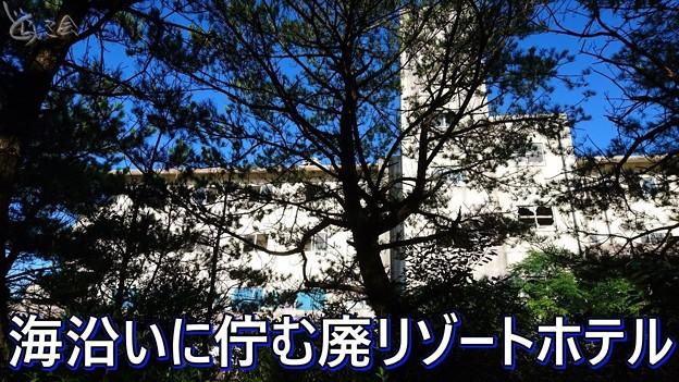 20200829 jcmiyazaki001