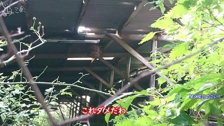 20200913 nichinan yamaoku haioku010
