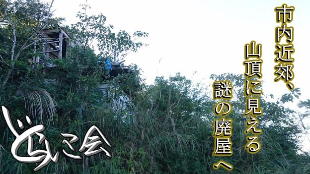 Photos: 20201104 asima yamagoya001