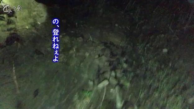 Photos: 20201104 asima yamagoya005