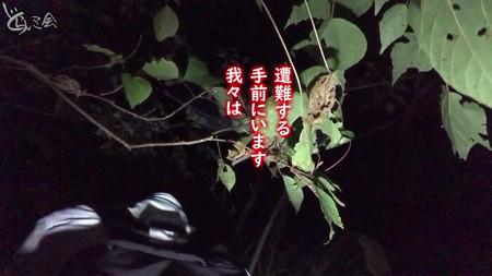 20201104 asima yamagoya007