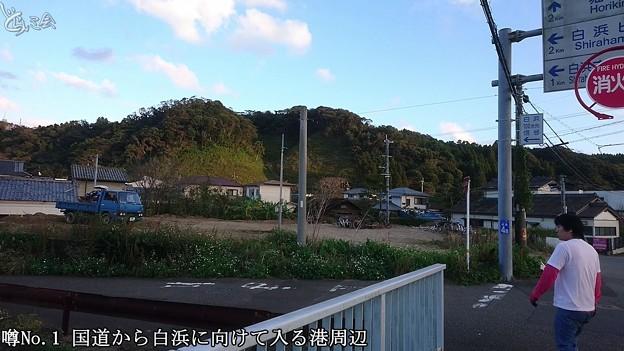 Photos: 20201115 aoshima bussharitou019