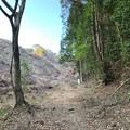Photos: 20201204 yamanokuchi021