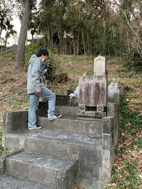 Photos: 20210207 miyazaki sugorokunotabi023