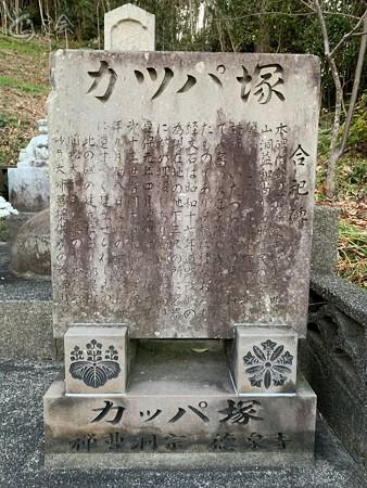 20210207 miyazaki sugorokunotabi025