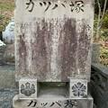 Photos: 20210207 miyazaki sugorokunotabi025