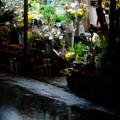 写真: 生花店の店頭、雨