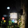 Photos: 常夜燈