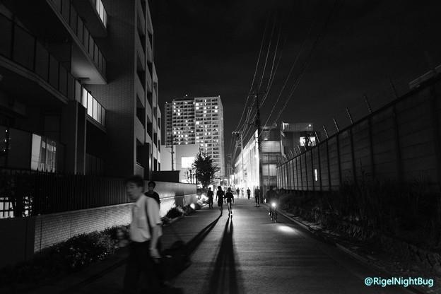 Photos: 鉄道沿線道路