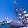 2017 長崎帆船まつり4