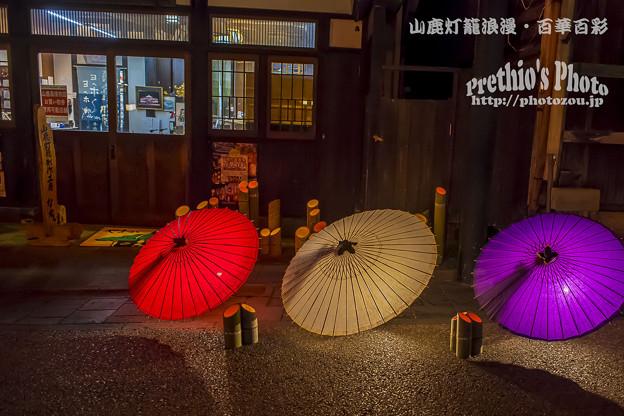 2019 山鹿 百華百彩4