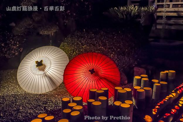 2019 山鹿 百華百彩10