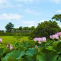 Photos: 2020年 吉野ヶ里公園19